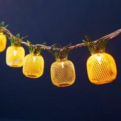 Mesh Pineapple String Lights – 10 Lights