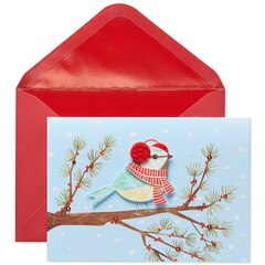 Handmade Bird with Earmuffs Boxed Cards, Set of 8