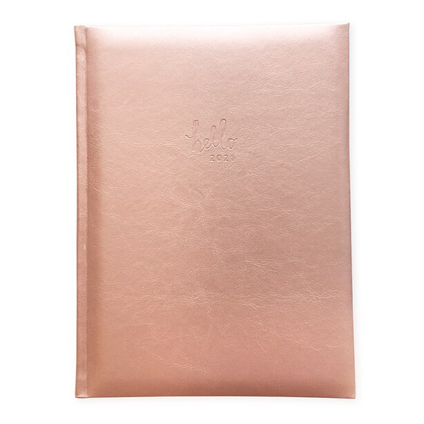 PIERRE BELVEDERE January - December 2021 DAILY ROSE GOLD PLANNER