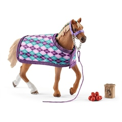 English Thoroughbred with Blanket