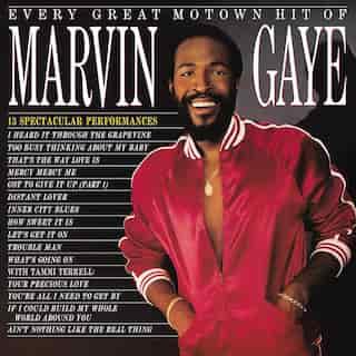 MARVIN GAYE - EVERY GREAT MOTOWN HIT OF MARVIN GAYE - VINYL