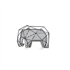 organisateur éléphant