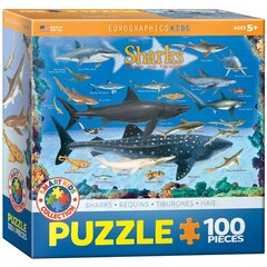 Sharks 100-Piece Puzzle