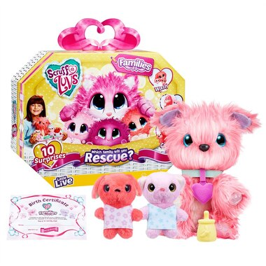 Scruff-a-Luvs™ Family Pack Rescue and Reveal Pet