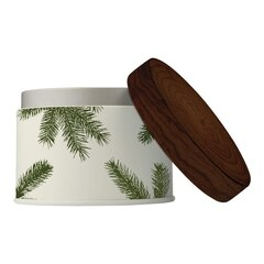Thymes® Frasier Fir Poured Tin Candle