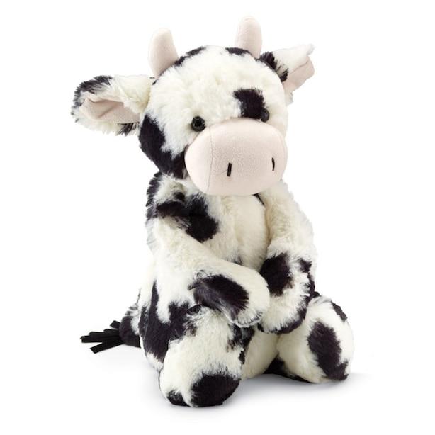 Bashful Cow