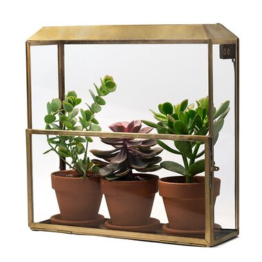 MODERN SPROUTS GROW HOUSE