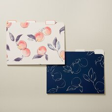 GEORGIA PEACH FILE FOLDERS SET OF 6