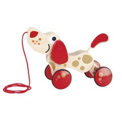 Hape Walk-A-Long Puppy Special Anniversary Edition