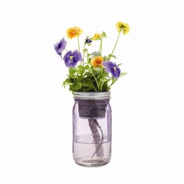 Self-Watering Flower Garden Jar - Pansy