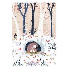 Boxed Cards - Hedgehogs