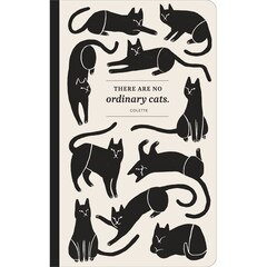 COMPENDIUM WRITE NOW  SOFTCOVER JOURNAL — NO ORDINARY CATS