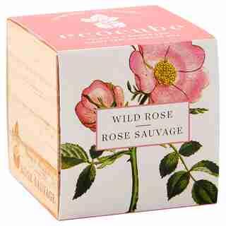 Ecocube Wild Rose Grow Kit