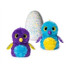 EGG Glittering Gardens - Hatching Egg - Shimmering Draggle  - One of Two Magical Creatures Insides