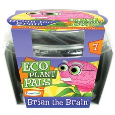 Eco Plant Pals - Brian the Brain