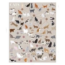 "POP CHART LAB CATS CATEGORIZED ART PRINT - 16"" X 20"""