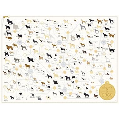 "POP CHART LAB DIAGRAM OF DOGS ART PRINT - 16"" X 20"""