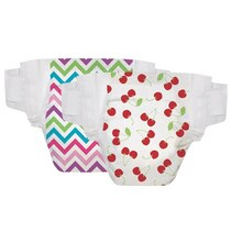 Honest Diapers - Size 4, Pack of 60