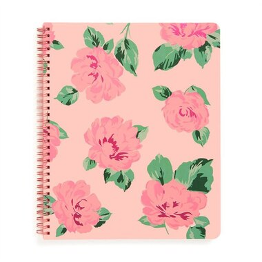Rough Draft Notebook Large Bellini