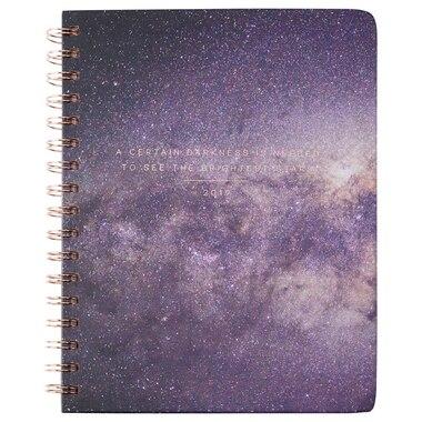 2019 12-Month Planner Certain Darkness Galaxy