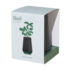 MODERN SPROUT TAPERED TUMBLER SELF-WATERING GROW KIT - BASIL