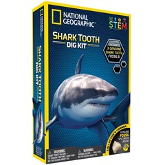 National Geographic Shark Dig Kit