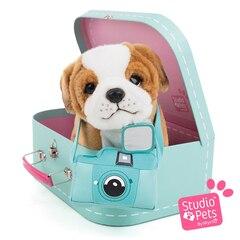 Studio Pets™ Plush Animal, Suitcase and Passport English Bulldog Puppy Star