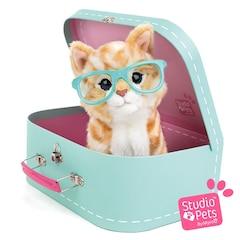 Studio Pets™ Plush Animal, Suitcase and Passport Red Kitten RayBen