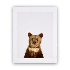 Bear Cub Little Darling Photographic Art Print – 8.5 x 11