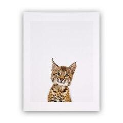 Reproduction Little Darling – Bébé lynx – 8,5 x 11 po