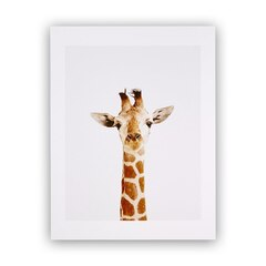 Baby Giraffe Little Darling Photographic Art Print – 8.5 x 11