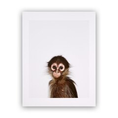 Baby Monkey Little Darling Photographic Art Print – 8.5 x 11