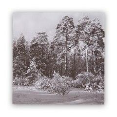 "Photo Real Tree Line Art Print – 12"" x 12"""