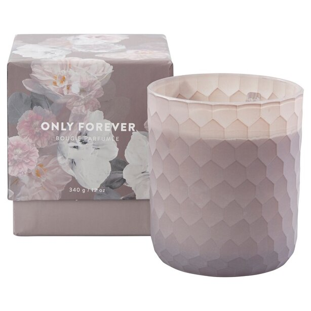 ONLY FOREVER SCENTED GLASS CANDLE 12 OZ.