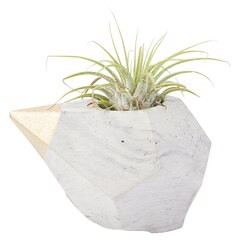 Small Teardrop Air Plant Holder - White & Black Marble