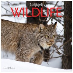 2019 12-MONTH WALL CALENDAR CANADIAN GEOGRAPHIC WILDLIFE