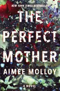 The Perfect Mother: A Novel by Aimee Molloy