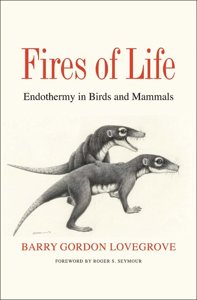Fires Of Life: Endothermy In Birds And Mammals by Barry Gordon Lovegrove