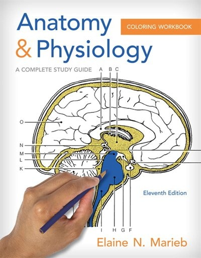 Anatomy & Physiology Coloring Workbook: A Complete Study Guide by Elaine N. Marieb
