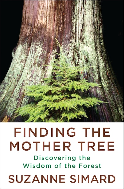 Finding The Mother Tree: Discovering The Wisdom Of The Forest by Suzanne Simard