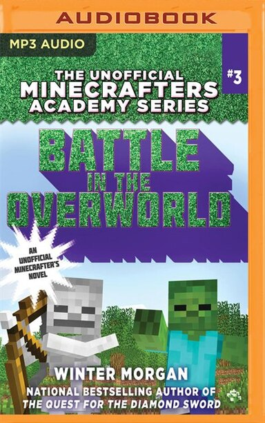 Battle In The Overworld by Winter Morgan