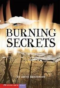 Burning Secrets by Steve Brezenoff