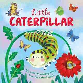 Nature Stories: Little Caterpillar: Padded Board Book de IglooBooks