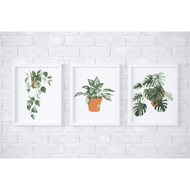 Tropical Potted Plants Paint by Number